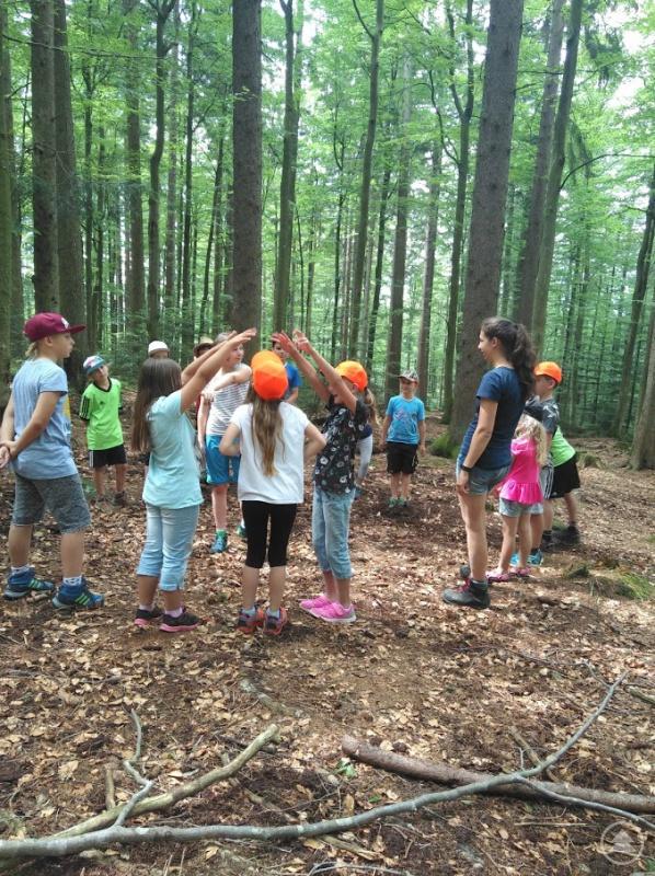 Spannende Spiele inmitten des Nationalparks Bayerischer Wald und vieles mehr erwarten die Kinder bei den Aktionen des Ferienprogramms.