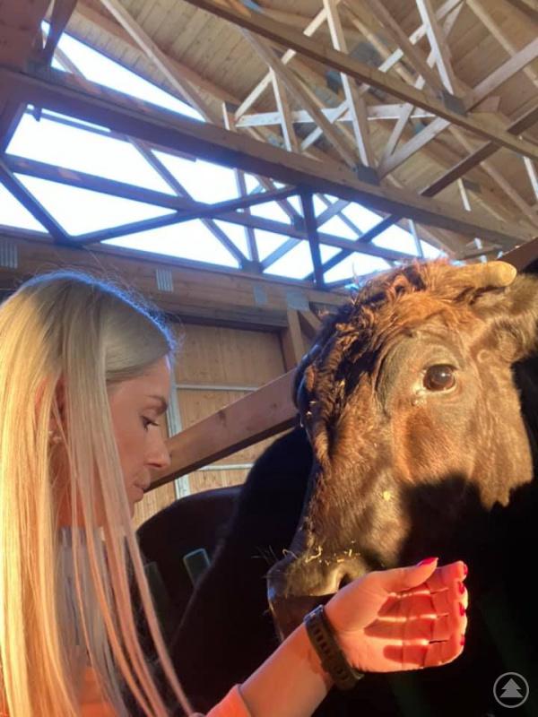 Die Rinder von Familie Götz sind ganz zutraulich, wie Maria Götz zeigt.