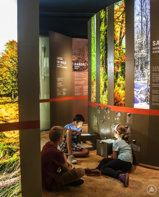 Nicht nur Kinder finden auf einer Entdeckertour durch die Ausstellung des Waldgeschichtlichen Museums viele spannende Geschichten.