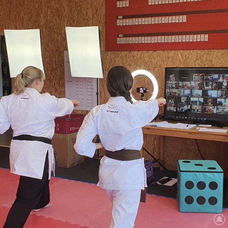 Zoom-Karate-Training